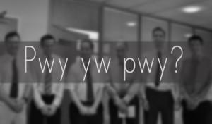 pwy yw pwyblur